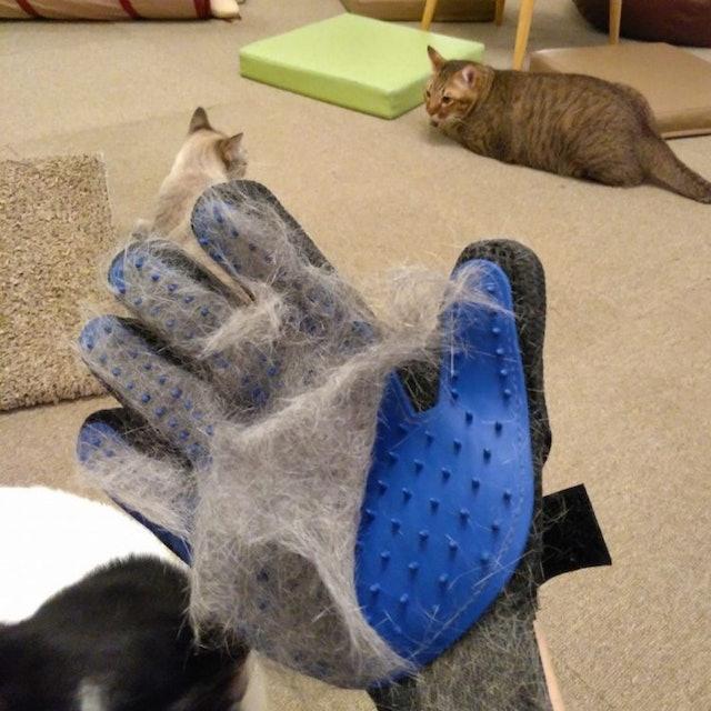 True Touch  ถุงมือหวีขน อุปกรณ์แปรงขนสัตว์เลี้ยง 1