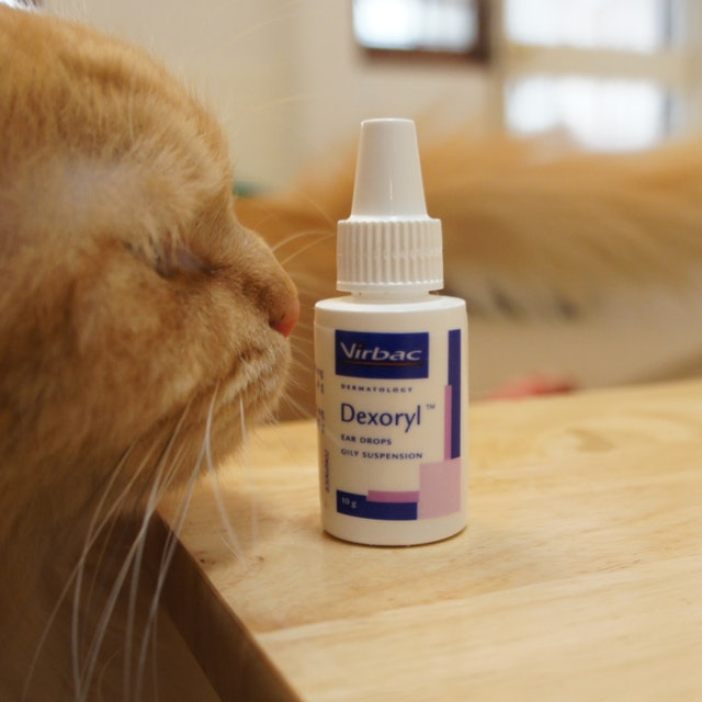 Virbac Dexoryl Ear Drops ยาหยอดหู สำหรับสุนัขและแมว 1