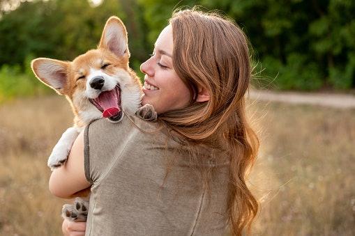 เลือกสเปรย์บำรุงขนสุนัขที่กลิ่นไม่แรงเกินไป