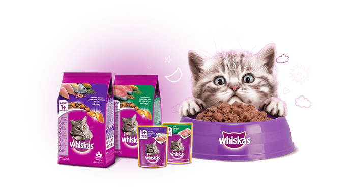 เลือกอาหารแมววิสกัสจากรสชาติที่วางจำหน่าย