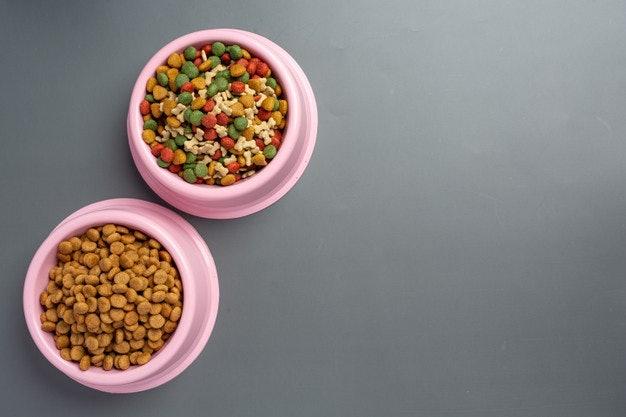 เลือกอาหารเม็ดดีไซน์พิเศษ เหมาะกับขนาดปากและฟันของสุนัขพันธุ์ชิวาวา