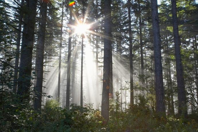 เลือกรองพื้นที่มีประสิทธิภาพในการป้องกันแสง UV