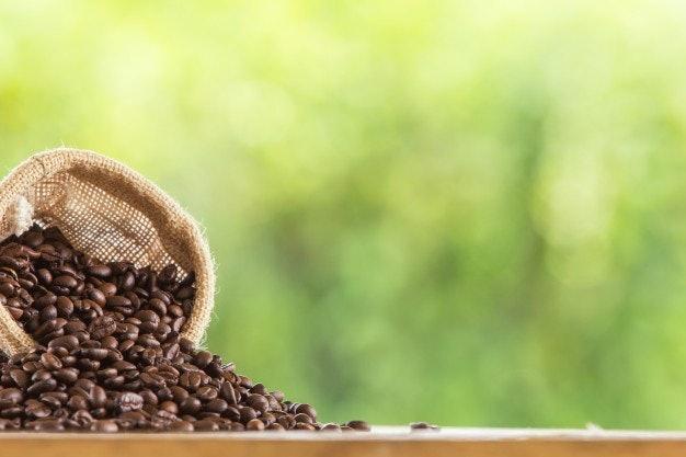 เลือกเมล็ดกาแฟที่สดใหม่ เก็บรักษาได้ยาวนาน