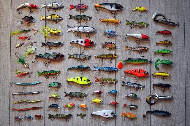 เลือกเหยื่อตกปลาแบบเหยื่อปลอม หรือเหยื่อจริง
