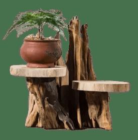 10 อันดับ ชั้นวางต้นไม้ ยี่ห้อไหนดี ฉบับล่าสุดปี 2020 ดีไซน์สวย ตกแต่งบ้านได้ ประหยัดพื้นที่ ตอบโจทย์คนรักษ์โลก 2