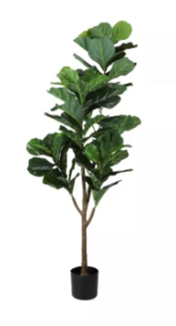 INDEX LIVING MALL ต้นไม้ปลอม ต้นไทรใบสัก 1