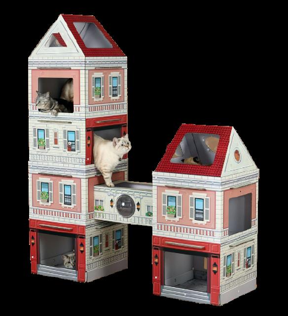 Kittenbox คอนโดแมว  1
