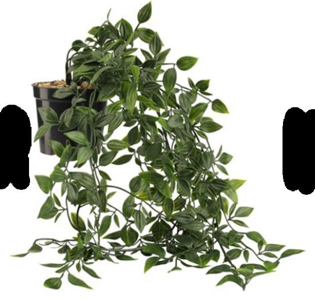 JYSK  ต้นไม้ปลอม ต้น OLIVER  1