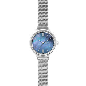10 อันดับ นาฬิกา Skagen รุ่นไหนดี ฉบับล่าสุดปี 2020 1