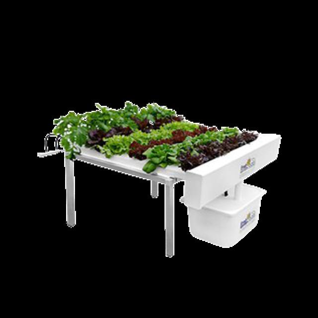 Fresh Garden Hydroponics ชุดปลูกผักไฮโดรโปนิกส์ 30 ต้น 1