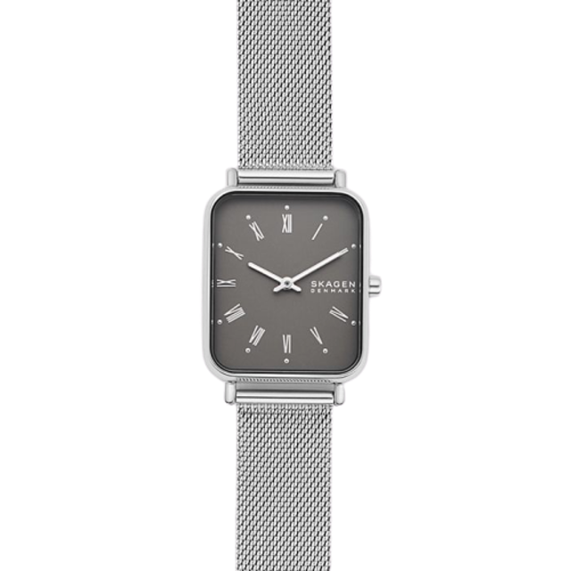 SKAGEN Ryle Two-Hand Silver-Tone Steel-Mesh Watch 1