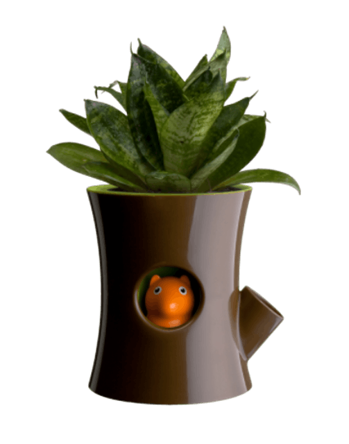 Qualy  Log and Squirrel-Self Watering Plant Pot  1