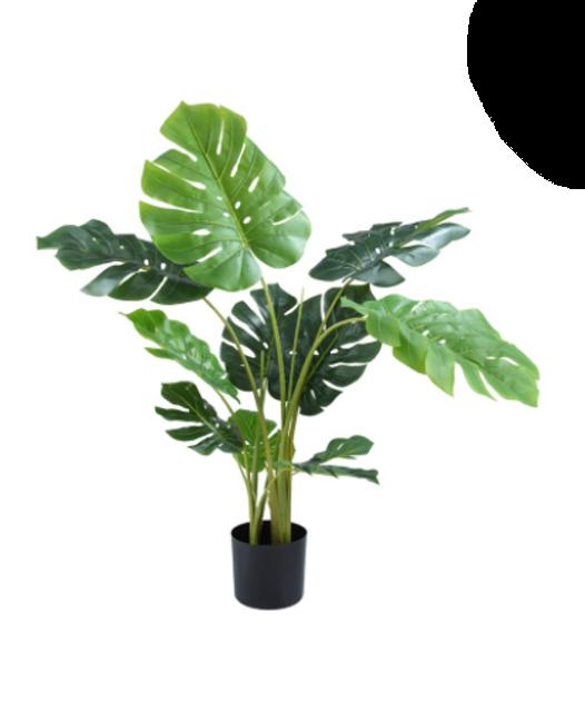 INDEX LIVING MALL ต้นไม้ปลอม ต้นมอนสเตอร่า 1