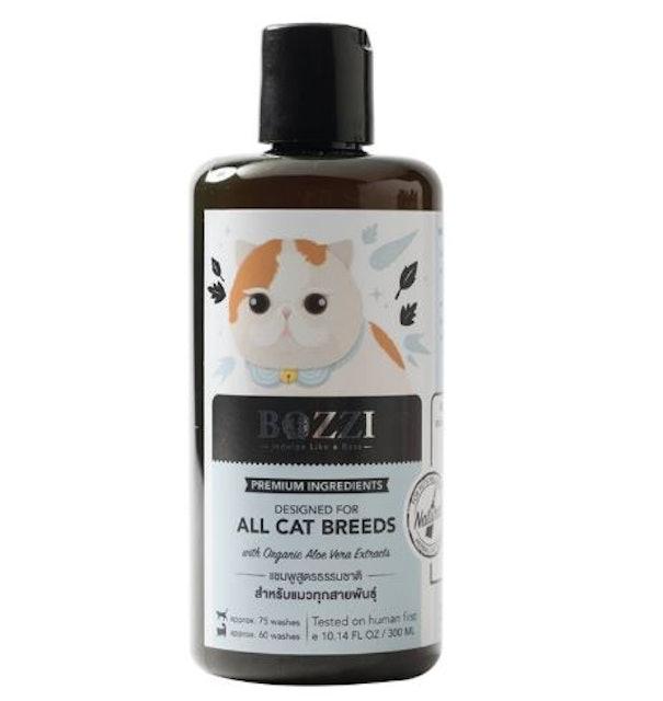 4. BOZZI – All Cat Breeds 1