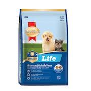 10 อันดับ สมาร์ทฮาร์ท สูตรไหนดี ฉบับล่าสุดปี 2020 อาหารสุนัขคุณภาพดี สารอาหารครบ รสชาติอร่อย มีทั้งอาหารเปียกและอาหารเม็ด