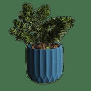 10 อันดับ กระถางต้นไม้ แนะนำ ยี่ห้อไหนดี ฉบับล่าสุดปี 2020 ดีไซน์สวย ปลูกต้นไม้ในคอนโดได้